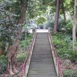 小丹神社008