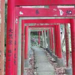 宮山稲荷神社002
